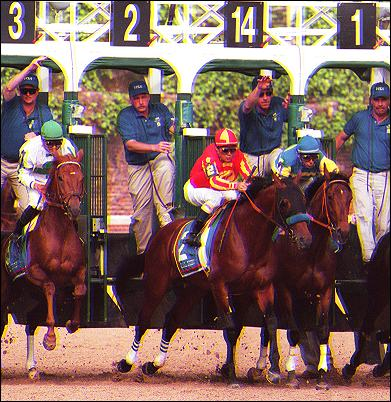 Horse Racing Introduction