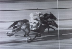 Real Quiet loses 1998 Belmont Stakes and Triple Crown by a nose to Victory Gallop