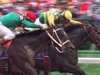 Horse Racing Partnerships pros and cons